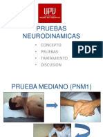 NEURODINAMICA EESS