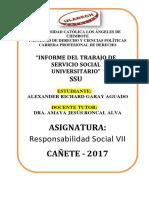 Informe Del Trabajo Del Servicio Social Universitario