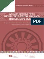 Curriculo de Bachillerato Ib 2017