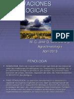 OBSERVACIONES FENOLOGICAS