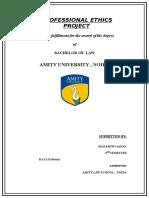 75986140-Professional-Ethics-Project.doc