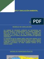 Modelamiento y Simulación Ambiental (1)