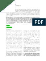 REPORTE-DE-LABORATORIO-BLOQUE-LÍPIDOS-1.1.docxcon-gráficasyyy