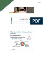 Z3-Annelida (2).pdf