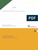 Tema Nº4 Parámetros Geomorfológicos_Huinco