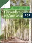 Caminhos para a Cura Interior trigueirinho.pdf