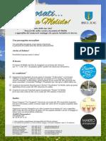 t 002101 Mel Wedding PDF