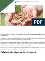 Vantagens e Desvantagens Da Energia a Biomassa