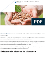 Vantagens e desvantagens da energia a biomassa.pdf