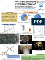 Panel Formicidae