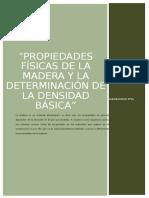 DENCIDAD BASICA DE LA MADERA (EUCALIPTO)