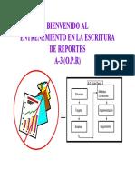 One Page Report Esquema 2
