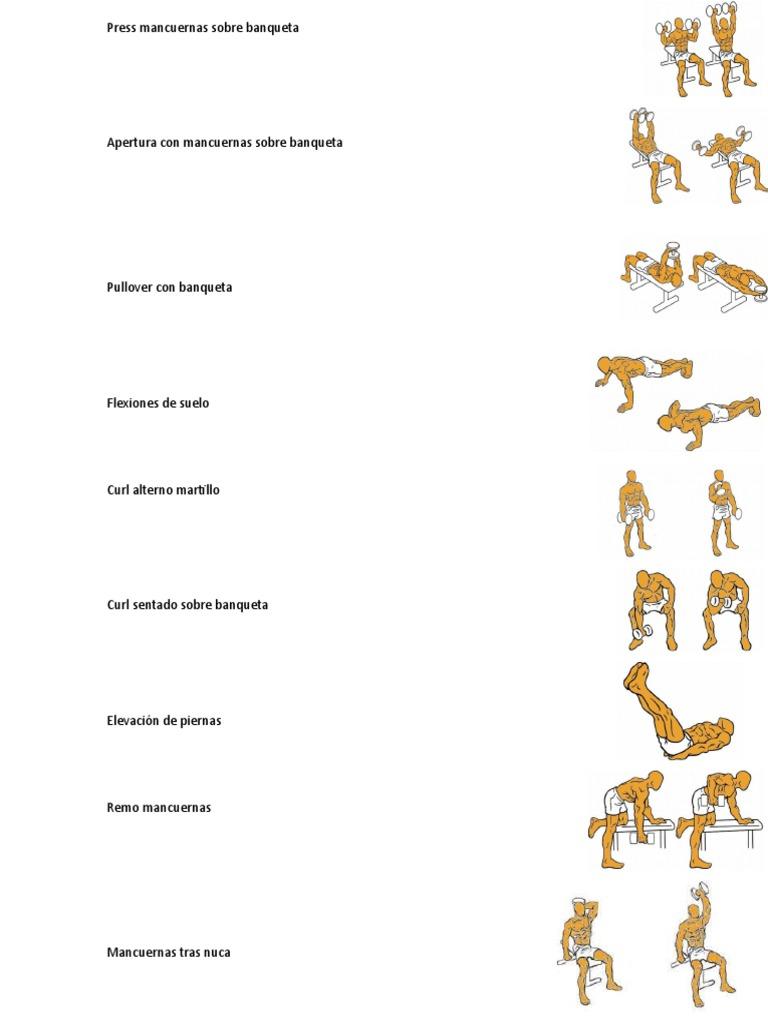 Tr/íceps tirar hacia abajo de la cuerda tr/íceps del entrenamiento Tire hacia abajo Adjunto Cuerda Cable Shape cuerpo Equipo f/ísico culturismo Herramientas Los accesorios para gimnasio en casa