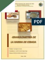 328667709 Informe de Granulometria de La Harina de Cebada Docx Corregido Docx