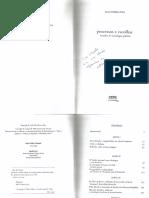 txt 4 Elisa. Processos e Escolha.pdf