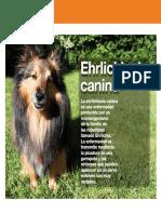 Enfermedad canina por Ricketssias.pdf