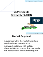 13249392 Ch Segmentation Targeting Positioning