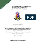 EVALUACIÓN DEL ESTADO DE CONSERVACIÓN, ESTRUCTURA Y COMPOSICION FLORISTICA DE LOS PALMARES DEL ÁREA URBANA DE RIBERALTA
