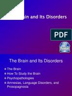 brain-1.ppt