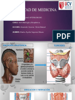 Eje Hipotálamo – Hipófisis - Tiroides