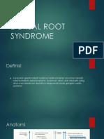 Dorsal Root Syndrome Slide