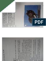 Libro El Super Gato
