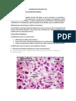 Informe de Patología 5