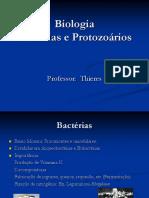 Bactérias e Protozoários