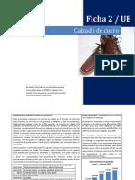 2. Ficha - Calzado de Cuero (1).pdf