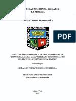 quinua tesis.pdf