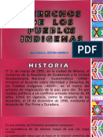 d e r e c h o s de Los Pueblos Indigenas Grupo 5.