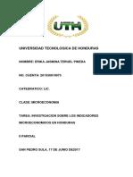 indicadores microeconomicos.docx