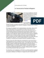 chimpances.doc