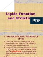 Lipids Function and Structure
