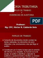 AUDITORIA III.ppt