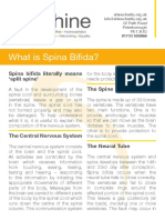 what-is-spina-bifida.original.pdf