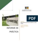 Informe de Práctica Quimetal