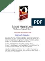 Basics of Jujutsu MMA