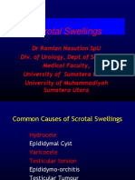 Scrotal Swelling