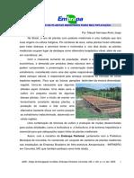 EMBRAPA - CANTEIROS.pdf