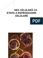 diviziunea-celularc483 (1).ppt