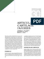 Articular-Cartilage-Injuries.pdf