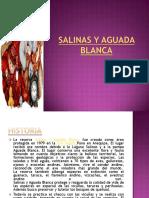 salinasyaguadablanca-130724193055-phpapp02