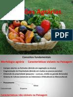 Conceitos e regiões agrárias.pptx