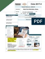 Practica Procesal Penal(1) (Reparado)