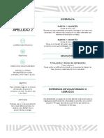 Plantilla CV