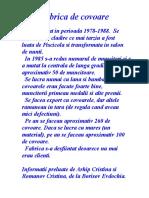 Fabrica de covoare-Arhip Cristina&Romanov Cristina-VIII A.doc