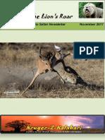 k2k Newsletter November 2017