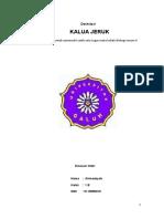 Ahmad Syah 1 b Kalua Jeruk Bali