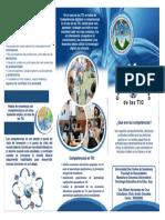 Guia Informativa Competencias en El Uso de Las Tics Dra Miriam